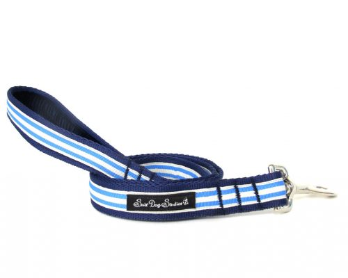 Blue and Cream Dog Lead