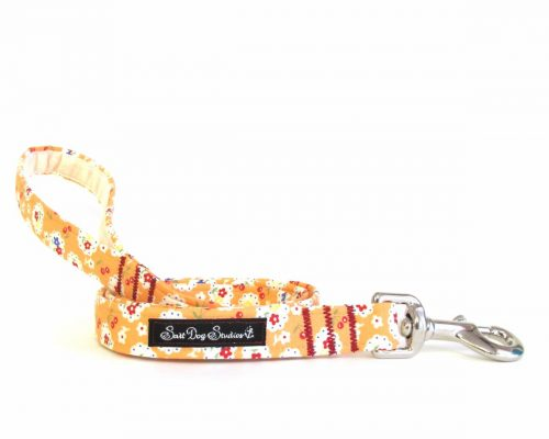 Betsy orange Dog Lead