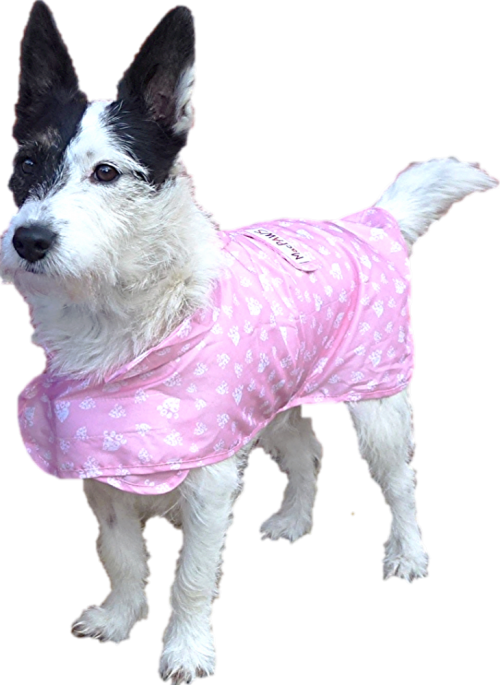 Packable Rain Dog Coat